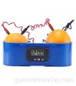 PANJAZE Kit de Reloj Digital de Frutas de Fruta de Papa DIY Reloj electrónico para Papa y Fruta para Juguete de enseñanza de DIY Juguete Aprendizaje de Juguetes Regalo para niños y Adolescentes