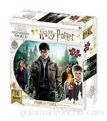 Prime 3D Puzzle lenticular Harry Hermione y Ron (Efecto 3D) 500 Piezas Multicolor (HP32559)